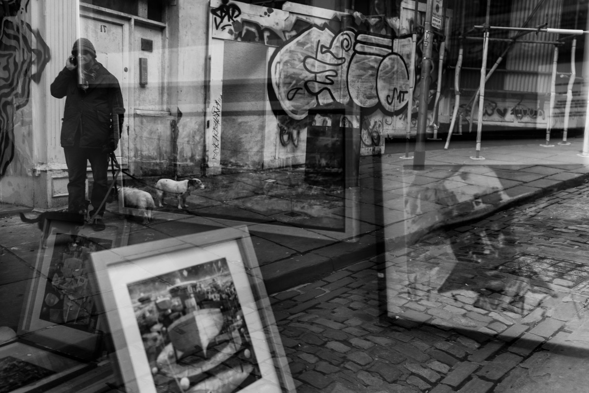 Reflection of man and his dogs in Folkestone high street window