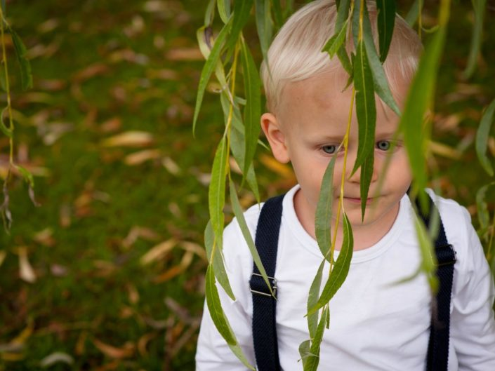 Outdoor portrait of small boy photographed among the willow tree branches