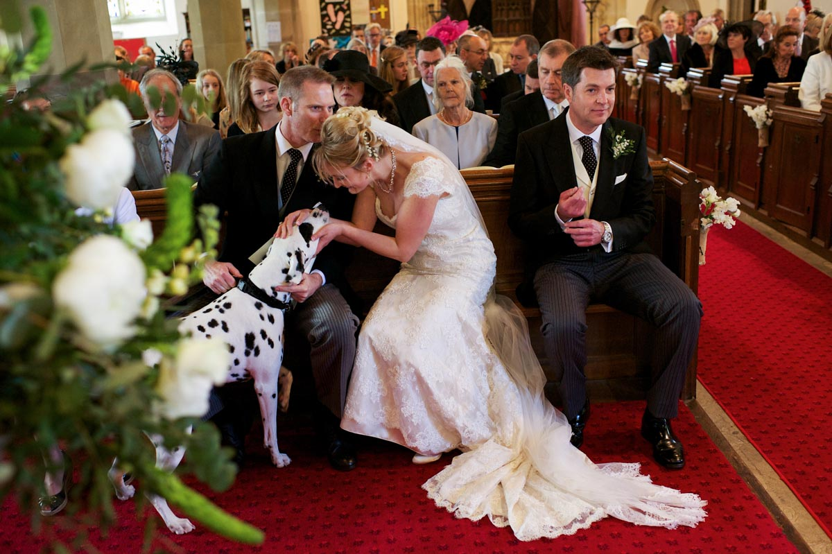 Kent wedding photography of bride and her dog in church during ceremony