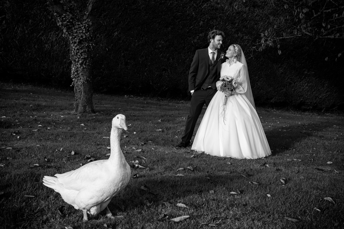 Photograph of jane and Steven with the family goose on their wedding day