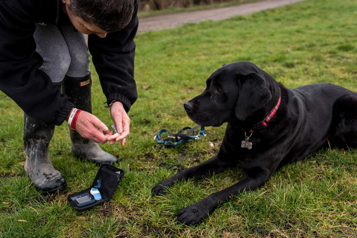 Claire tests her blood while her medical detection dog looks on