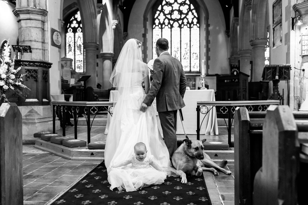 baby and dog sitting on brides train during kent wedding ceremony