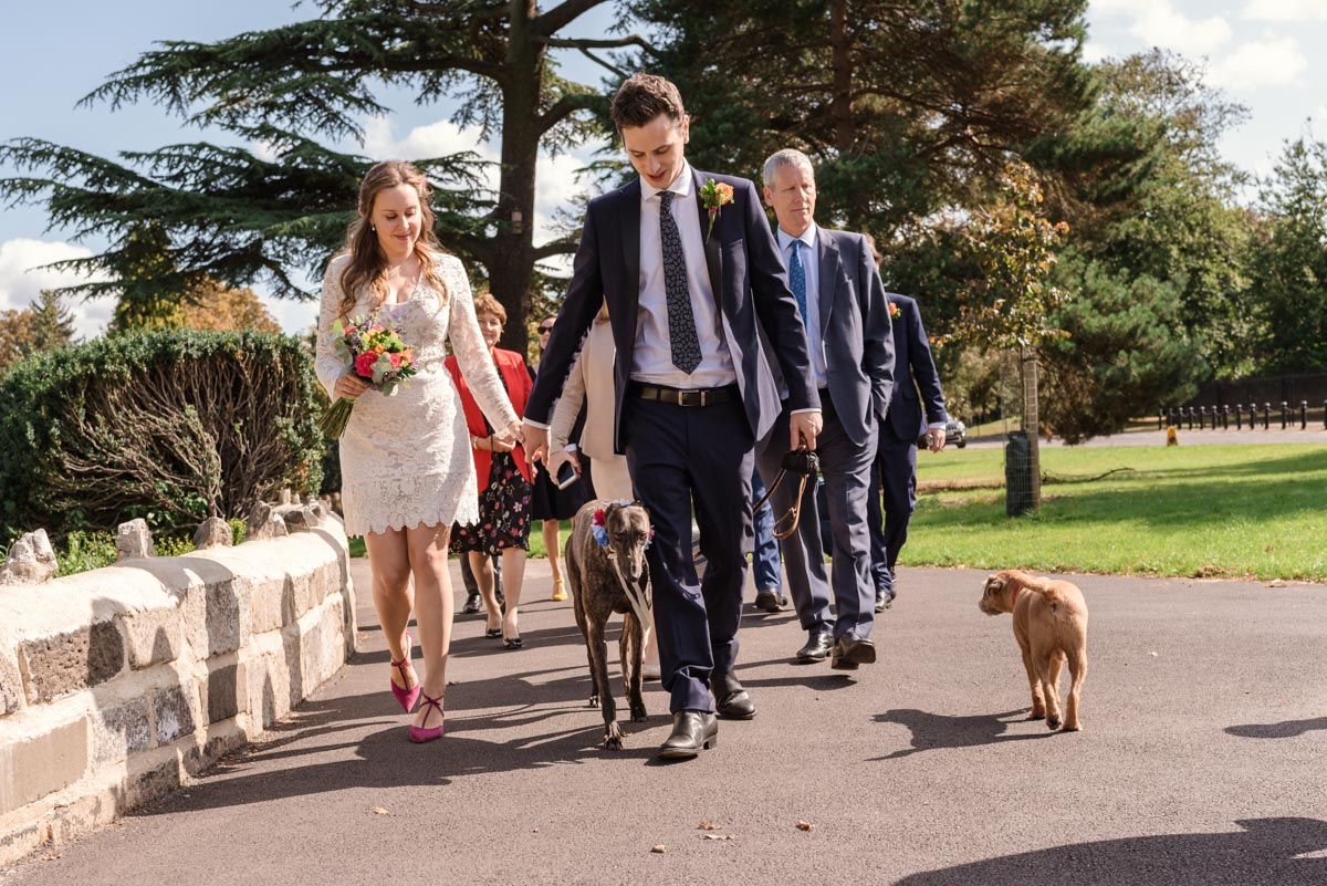Couple, their dog and wedding guests walk back from the gardens outside Bexley House wedding venue