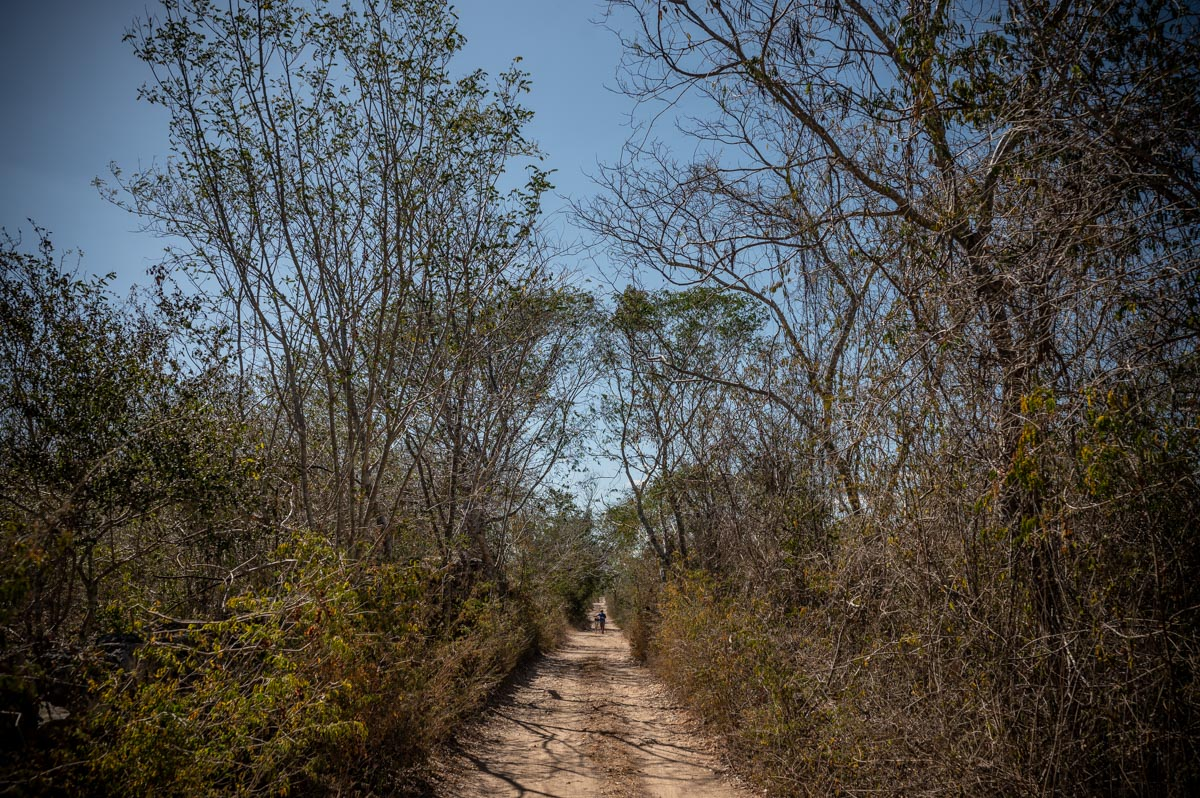 Mexico, dirt road leading to cenote. The feeling I have in a world without weddings